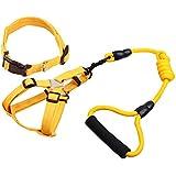 medio arnés del perro amarillo con una variedad de mascotas en marcha ventaja de 4 pies de largo y nylon collar para caminar (3 pack)