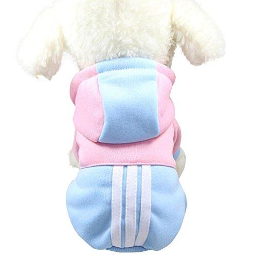 Ropa mascotas Amlaiworld sudadera con capucha para pequeño perros accesorios ropa Perritos caliente Jerseys chaleco camisetas suéter para mascotas perros gatos (Azul cielo, XL)