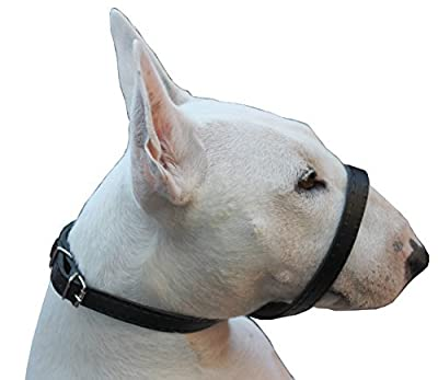 Adjustable Leather Loop Bite Bark Control Easy Fit Muzzle Black Large from Dogs My Love