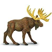 Safari WS NAW Moose