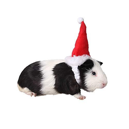 Amakunft Kleine Tiermütze Meerschweinchen Geburtstag Hut Katze Weihnachten Urlaub Hut Kostüm Zubehör für Hamster Eichhörnchen Chinchilla (Chinchilla Kostüm Halloween)