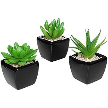 Set Of 3 Modern Home Decor Mini Succulent Artificial Plants With Square  Black Ceramic Pots