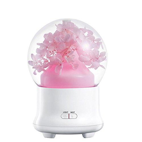 Gulin 6.6Inch Crystal Ball geformte unsterbliche Blume kühlen Nebel Luftbefeuchter 7-farbiges LED-Licht Ultraschall, 100ml rosa Hortensie US
