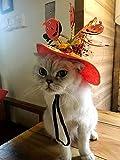 Ungfu Mall Haustierhut Kürbis Halloween-Kostüm für Hunde und Katzen, für Urlaubspartys, Halloween, Weihnachten und Ostern