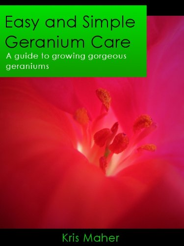 Easy and Simple Geranium Care - A Guide to Growing Gorgeous Geraniums