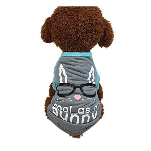 Hund T-Shirt,Ostern Hund Kleidung Polyester T-Shirt Welpen Kostüm für kleine Hund Kleidung Kleidung,Pet Kleidung für Mädchen Jungen,für Kleine Hunde,Welpen,Schnauzer,Teddy,Pudel,Chihuahua (Grau, M)