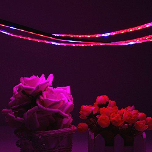 solmore led pflanzenlampe strip streifen wachsen licht band pflanzenleuchte pflanzen. Black Bedroom Furniture Sets. Home Design Ideas