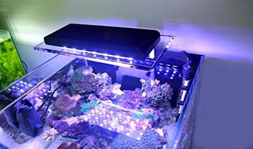 WML-LAMP WiFi Kontrolle wachsen LED Aquarium Beleuchtung dimmbar Marine SPS Riff Algen LED Korallen wachsen Licht Lampe Meer Aquarium Lampe Aquarium (Color : ZA 1201WIFI) -