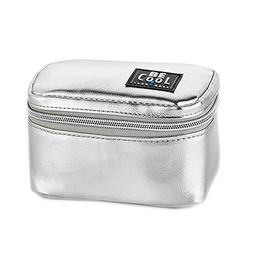 Kleines Kühlmäppchen Kühltasche für Kosmetik, Medizin, Reisen, Ausflüge in Silber 14 x 8 x 8 cm, ca 0,5 L Volumen -