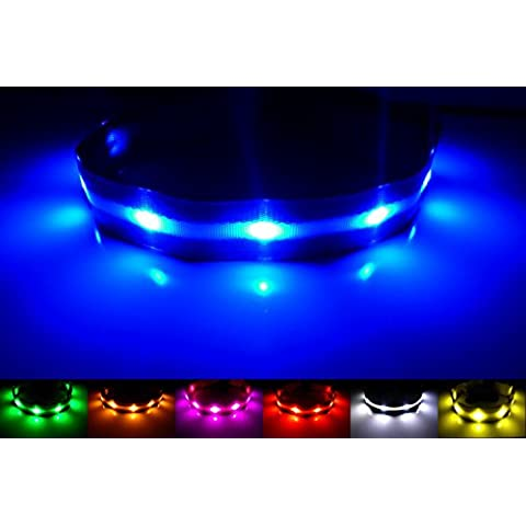 GoDoggie-GLOW Collar de perro LED