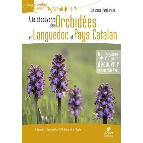 A la découverte des orchidées en Languedoc et Pays Catalan
