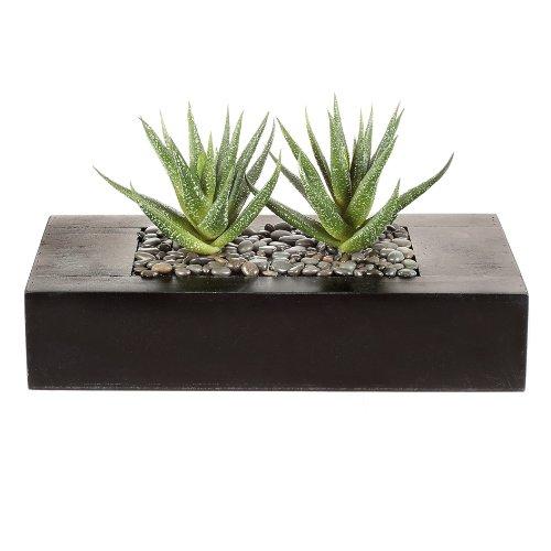 wohnfuehlidee Kunstpflanze Agave, Farbe grün, im Holzkasten, Höhe ca. 14 cm