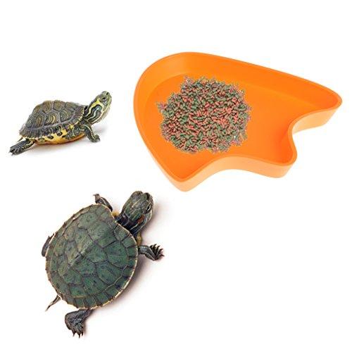 Yanhonin Schüssel Reptile, Fressnapf, Wasserschale, Form der Prägung