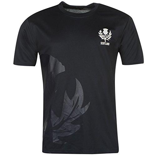 Team Herren Rugby T Shirt Kurzarm Rundhals Regular Fit Freizeit Print Motiv Schottland Small (Rugby-shirt Kurzarm-gestreiften)