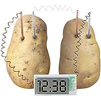 Reloj Digital Alimentado por Patata, Juego de Juguetes Divertido para niños