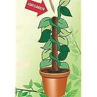 Gardener Koko Bitki Destek Sopası 110 cm