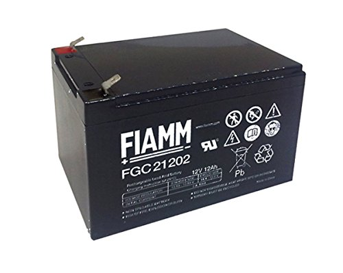 BATT. AL PIOMBO 12V 12 Ah FIAMM CYCLIC USE FGC21202