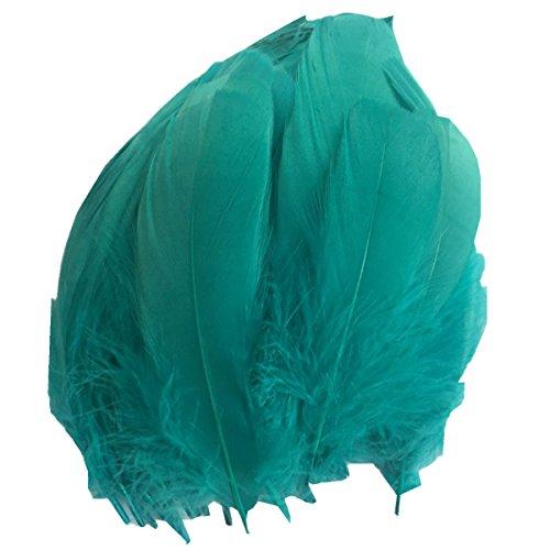 Y Hochzeit federn basteln Federn Gans federn großen Zierfedern 15-20cm (Blauen Feder Kostüme Maske)