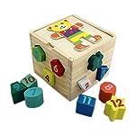 Tootpado (1TNG118) Shape Sorter Cube 12 Geometric Blocks - Wooden Puzzles Shape Color Recognition