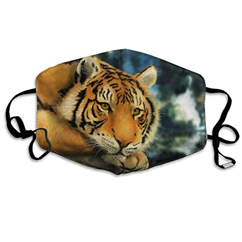 Masken,Masken für Erwachsene,Lazy Tiger Masks,Washable and Reusable Cleaning Mask,For Allergens,Exhaust Gas,Running,Cycling,Outdoor Activities