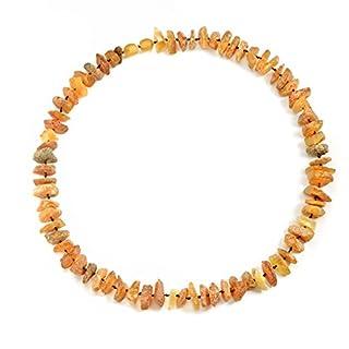 amberdog Bernsteinkette-für-den-Hund Sonne Art.Nr.00528-L Größe 43cm