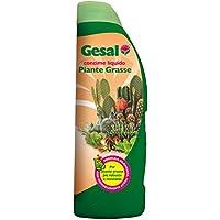 GESAL 2676402005 Concime per Piante Grasse, 500 ml, Verde, 22.5x7.9x5 cm