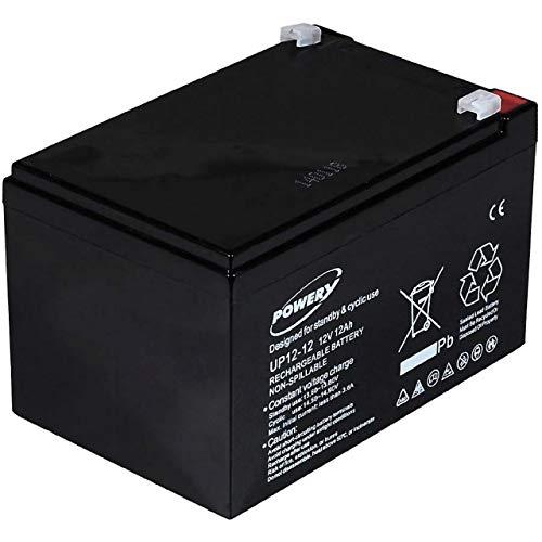 Powery Batería de GEL para Sillas de ruedas Scooter eléctrico Vehículos eléctricos 12V 12Ah