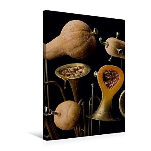 Premium Textil-Leinwand 50 cm x 75 cm hoch, butternut trumpet | Wandbild, Bild auf Keilrahmen, Fertigbild auf echter Leinwand, Leinwanddruck (CALVENDO Lifestyle) (Butternut Wein)