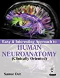 Easy & Interesting Approach To Human Neuroanatomy (Clinically Oriented)