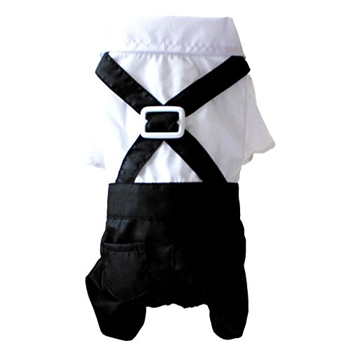 ranphy Chihuahua Sweatshirt Hochzeit Anzug für Hunde Gentleman vierbeinigen Jumpsuit Stecker Overalls Pet Puppy Outfits schwarz weiß (Für Menschen Halloween Schwarze Besten Kostüme Die)