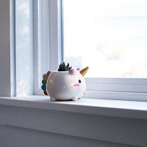 Einhorn Blumentopf - Elodie the Unicorn Planter