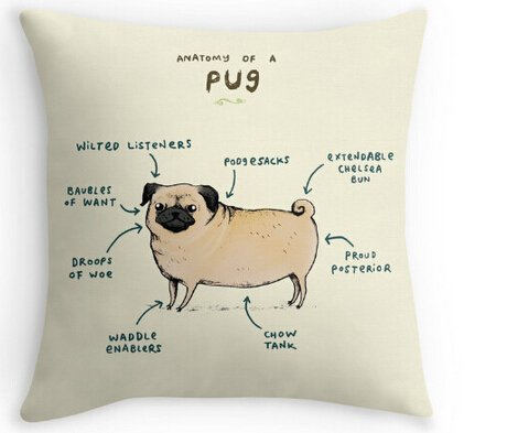 CCTUSGSH Funny Anatomy of A Pug Cute Puppy Throw Pillow Case Cushion Cover Twin Sides for Couch Sofa Or Bed Set Cozy Home Decor Size:20 X 20 Inches/50cm x 50cm -