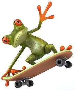 Sticker Frosch Mit Skateboard I Kfz 280 I 12 5 X 15 Cm Groß I Für Motorrad Mofa Roller Notebook Laptop Auto Aufkleber Bad Aufkleber Lustig Wetterfest Auto