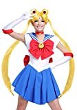 Sailor Moon Wig Standard