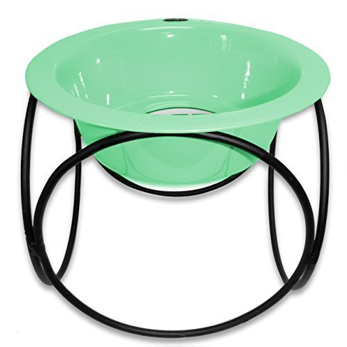 Platinum Pets Platinum Pets 8-Cup Olympic Single Diner Stand with Wide Rimmed Bowl, Winter Mint by Platinum Pets - Rimmed Bowl