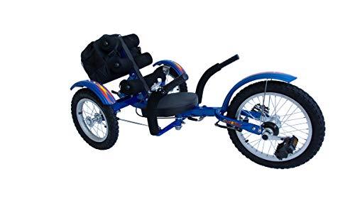 Holzspielerei Liegerad CartRider blau für Kinder/Go-Kart/Trike günstig / 4 bis 8 Jahre/Max. 75 kg (Blau)