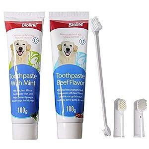 xianjun 100g Pet Dentifrice Set, Brosse À Dents De Chien Produits D'hygiène buccale Supprimer Mauvaise Souffle Dents De Chat Brushing Set Dentifrice pour Animaux