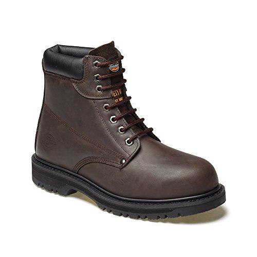 Dickies Cleveland CLEVE8H Chaussures de sécurité Miel Pointure 42 (Import Grande Bretagne) Marron foncé
