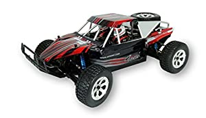 Amewi 22232 - Breaker 4 WD Brushless 1: 10 Arena Buggy