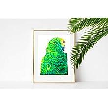 Générique Chloe Croft London Sultry Parrot Édition limitée Fine Art Print Taille B, Vert/doré/Jaune, Blanc/Bleu/Orange/Bleu
