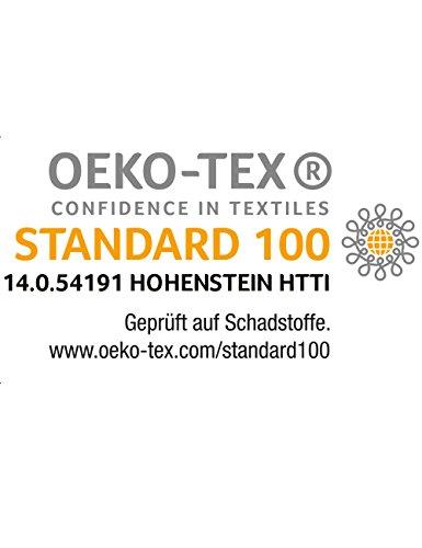 iQ-UV Herren 300 Shirt Regular Geschnitten Schutz Uv T-Shirt ash-Black