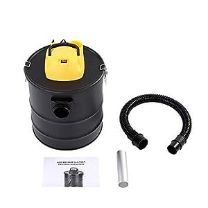 Aspiradora de mano en seco, 1000 W, con manguera resistente al fuego, filtro de 20 l, aspirador de cenizas y chimeneas