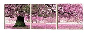 Wowdecor kit dipingere con i numeri per adulti bambini Junior principianti per anziani, pittura numerata, set da 3pezzi, colore viola, paesaggio 16x 20x P cm Framed