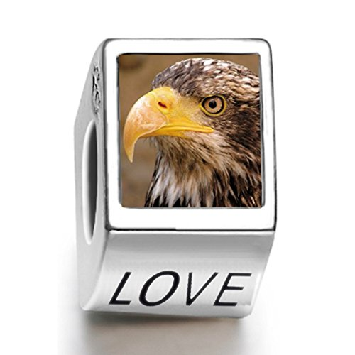 Rarelove Sterling Silver An Eagle Face Animal Photo Love European Charm (Mens Sterling Silver Eagle)