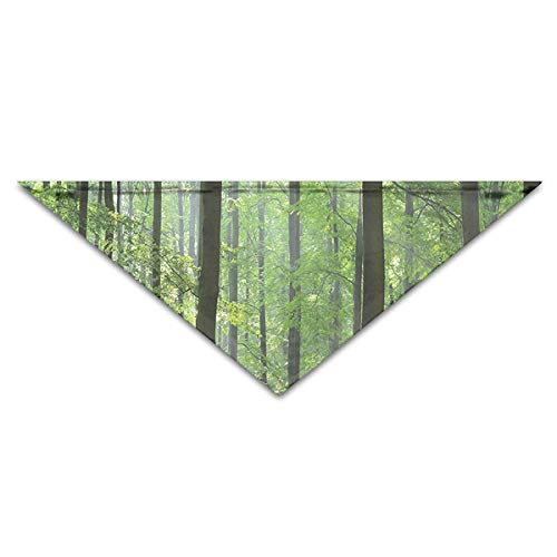 Rghkjlp Sunny Woodland Pet Bandana Triangle Dog Cat Neckerchief Bibs Scarfs Accessories for Pet Cats and Baby Puppies -
