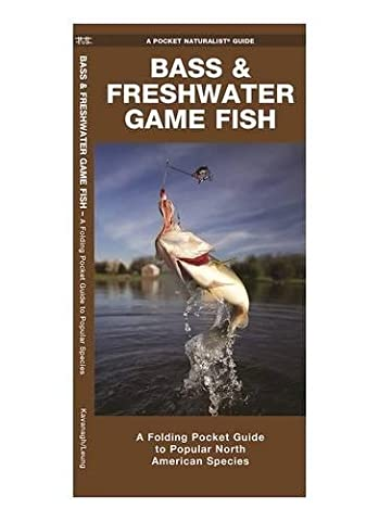 Bass & Freshwater Game Fish: A Folding Pocket Guide to Popular North American Species (Pocket Naturalist Guide Series)