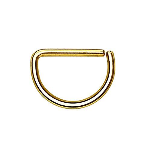 Paula & Fritz® Halbrunder biegbarer D-Form UNIVERSAL Fake Hoop Ring 10mm lang 0.8mm dick Gold Segmentring Septum Tragus Helix Cartilage Nasen-Piercing Ohrklemme Nostril Chirurgenstahl Titan