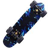 PANLISONG Sport Skateboard, Scivolo Esterno Piccolo Pesce Piatto/ABEC-11 Cuscinetto Cuscinetto A 7 Strati in Acero Deck può Trasportare Peso 150 kg/Universale Adulti Bambini