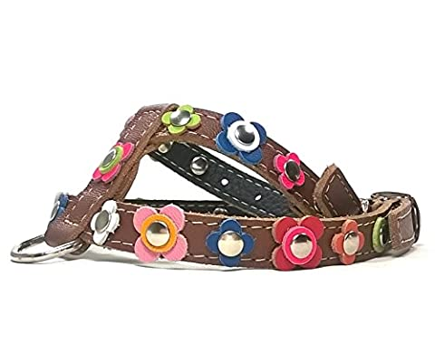 Designer Dog Harnesses for Small Dogs and Chihuahua - Brown Leather - Happy Style Flower Dog Collar