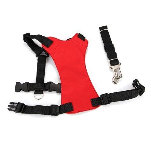 hundeinfo24.de Auto Hunde Sicherheitsgeschirr Sicherheitsgurt Hundegurt Größe M Rot